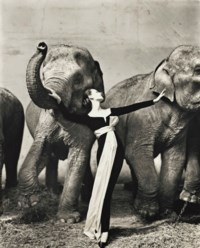 Dovima with Elephants, Evening Dress by Dior, Cirque d'Hiver, Paris, 1955