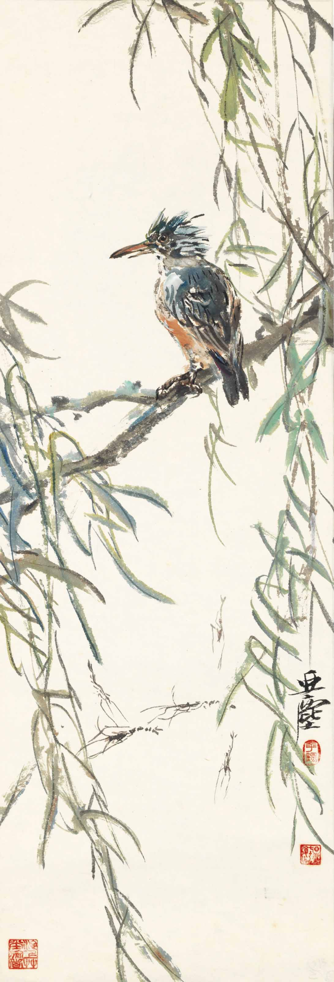 Bird and Willow