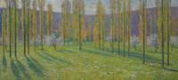 Peupliers au printemps au bord du Vert