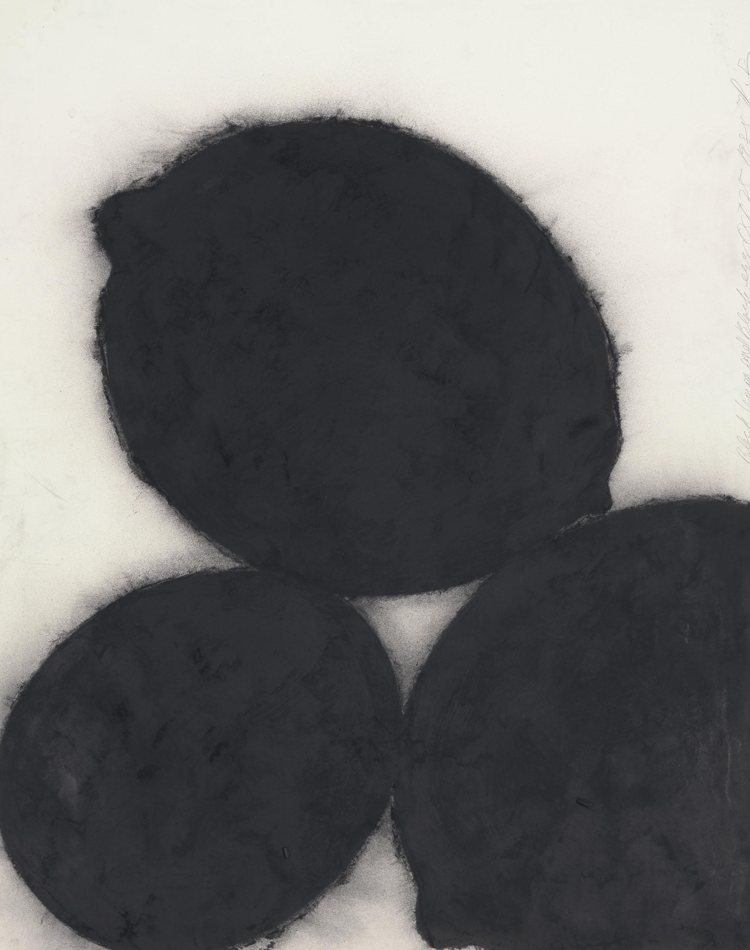 Black Lemons and Black Egg, October 25, 1985