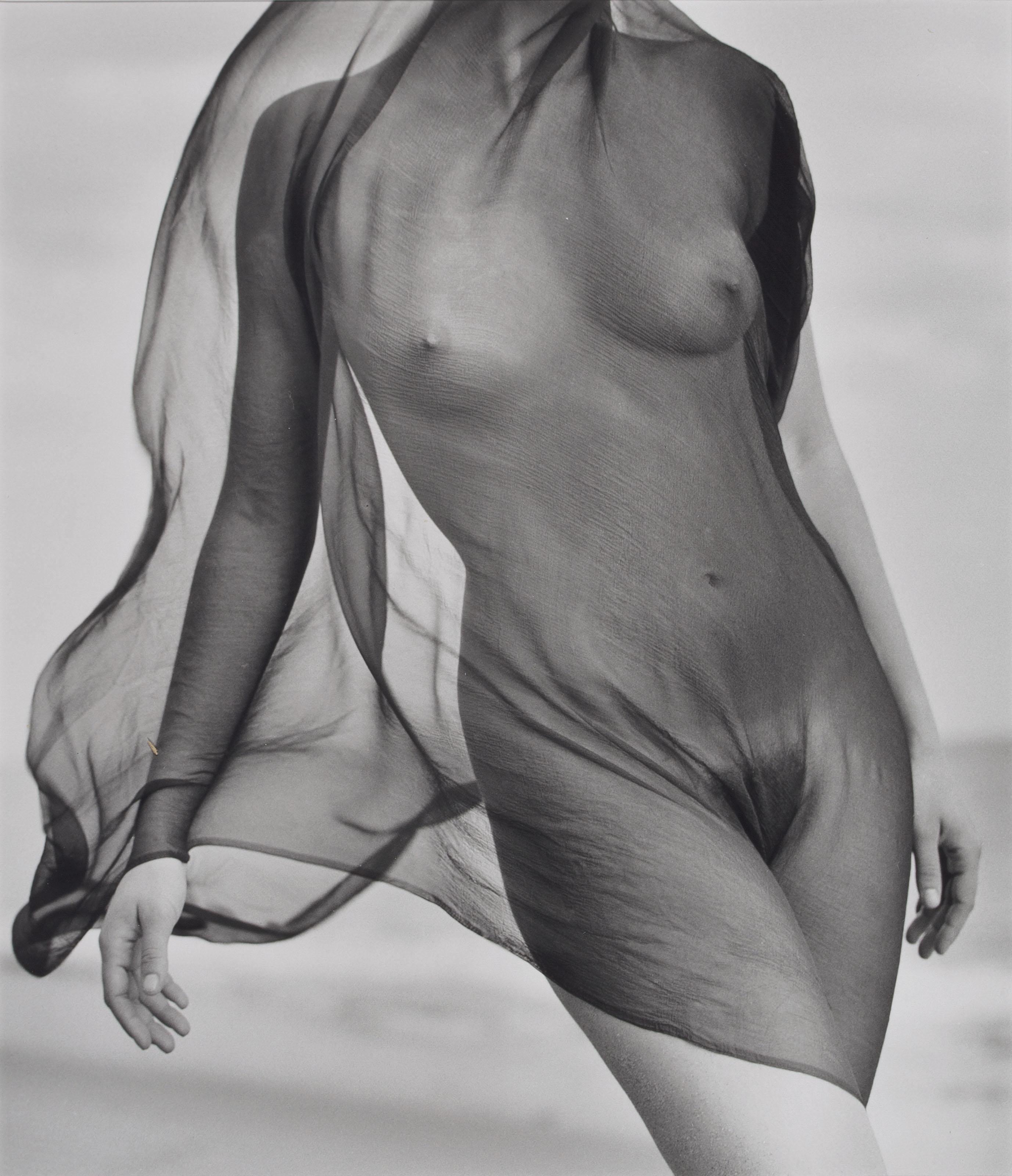 Female Torso with Veil, Paradise Cove, California, 1984