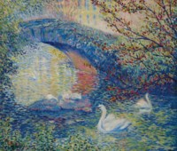Swans, Central Park