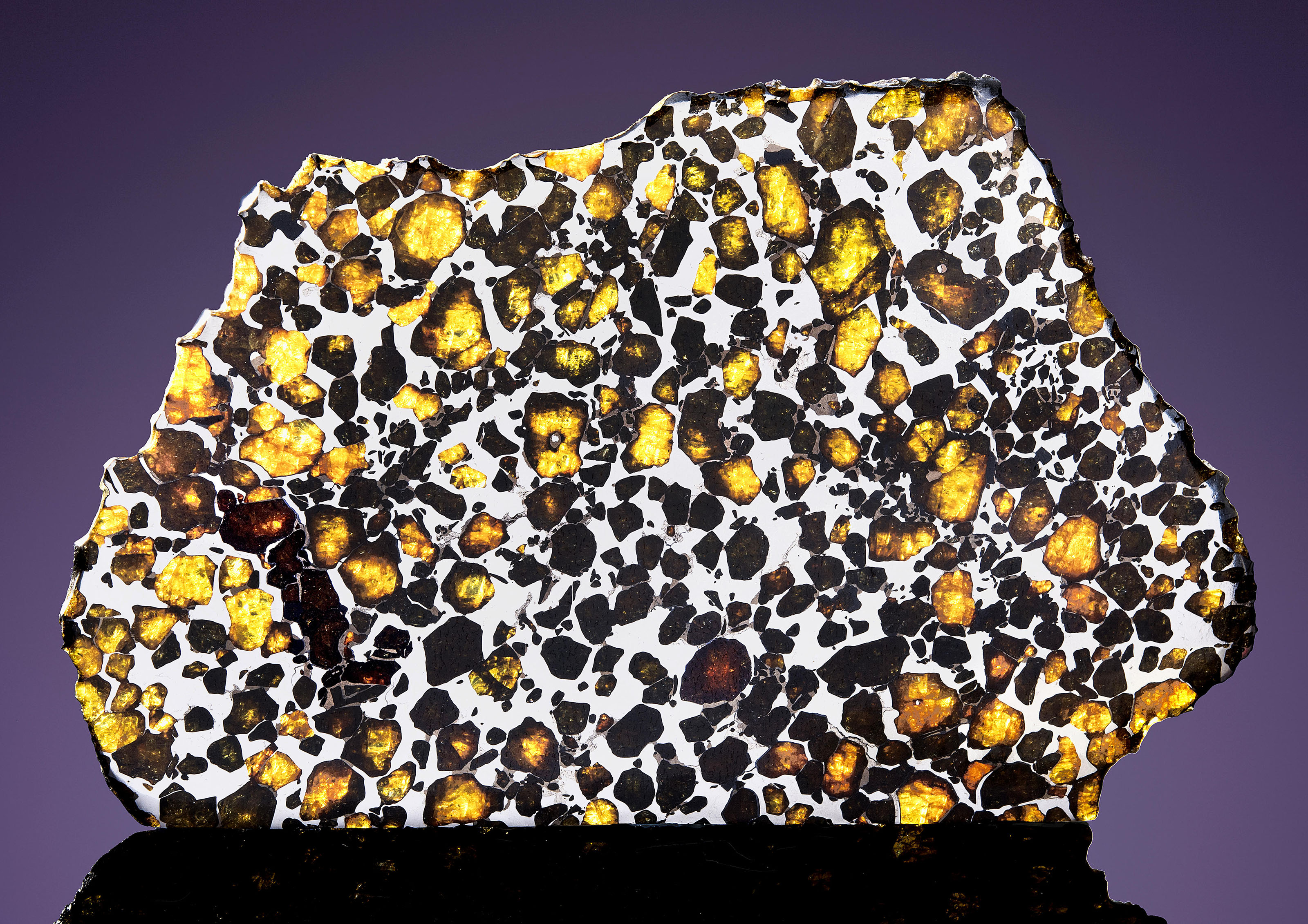 IMILAC PALLASITE PARTIAL SLICE — THE MOST BEAUTIFUL EXTRATERRESTRIAL SUBSTANCE KNOWN