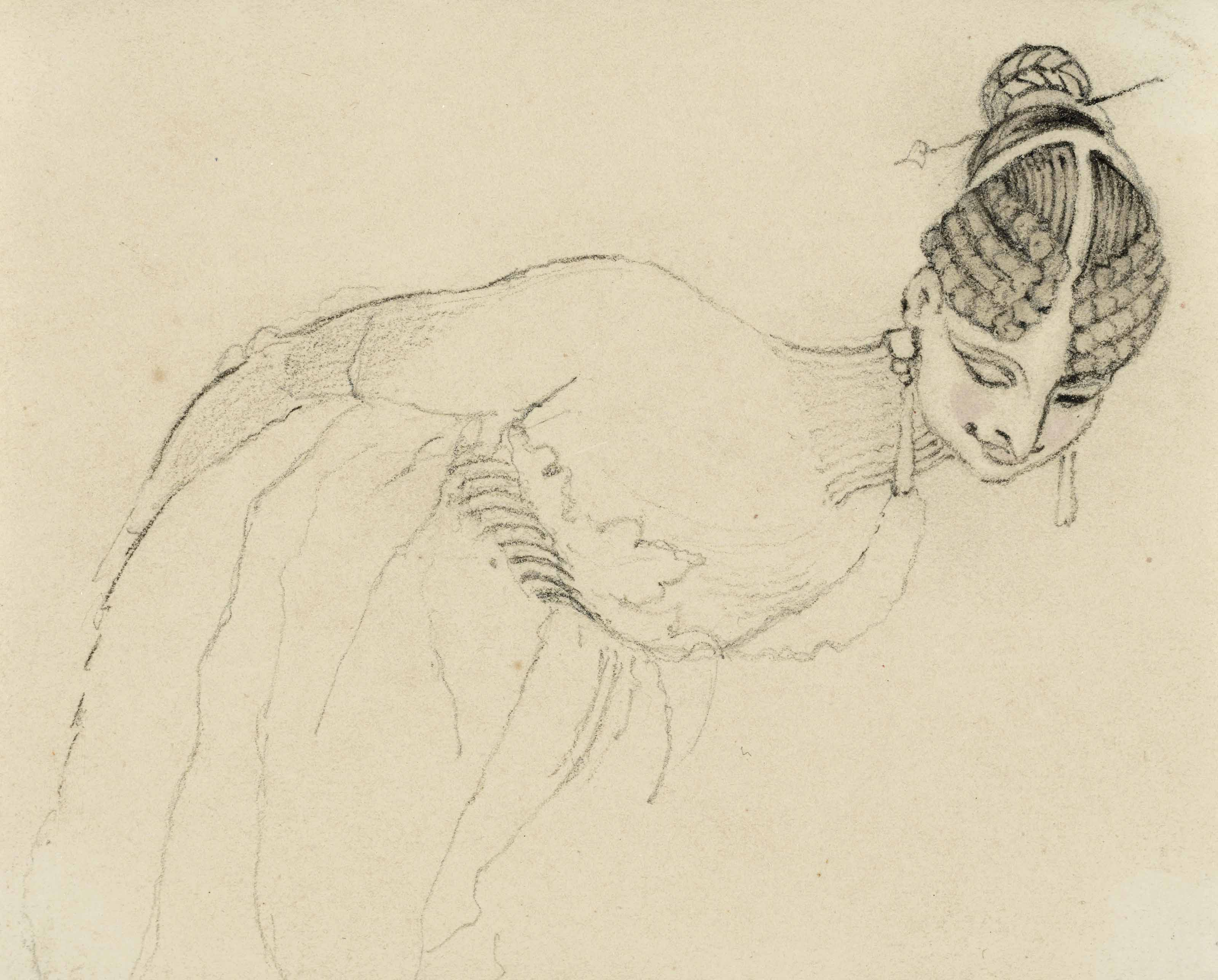 Jeune femme penchée en avant, possiblement Harriot Mellon