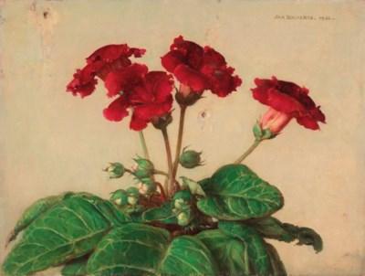 JAN BOGAERTS (BOIS-LE-DUC 1878