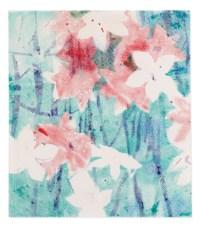 Alpenveilchen/Flowers