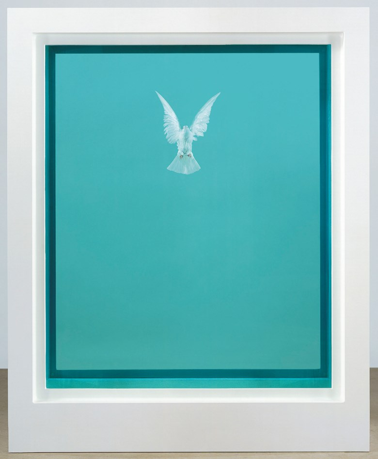 Damien Hirst (b. 1965), The Incomplete Truth, executed in 2006. Glass, painted aluminium, silicone, acrylic, stainless steel, dove and formaldehyde solution. 87 x 69 x 29⅛ in (222 x 176 x 74 cm). This work is number two from an edition of three plus one artist's proof and one Hors de Commerce. Estimate £1,000,000-1,500,000. This lot is offered in The George Michael Collection