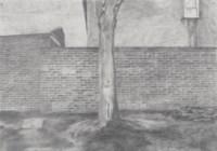 Untitled 16 (Ash Wednesday 6.00 am)