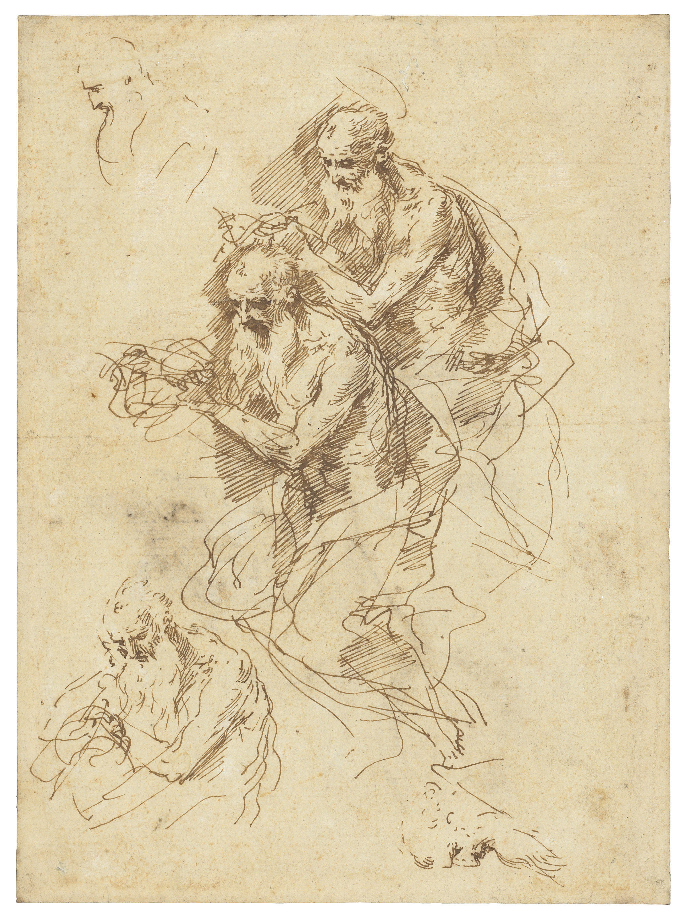 Three studies of Saint Jerome and two separate studies of heads (recto); Study of a flower (verso)