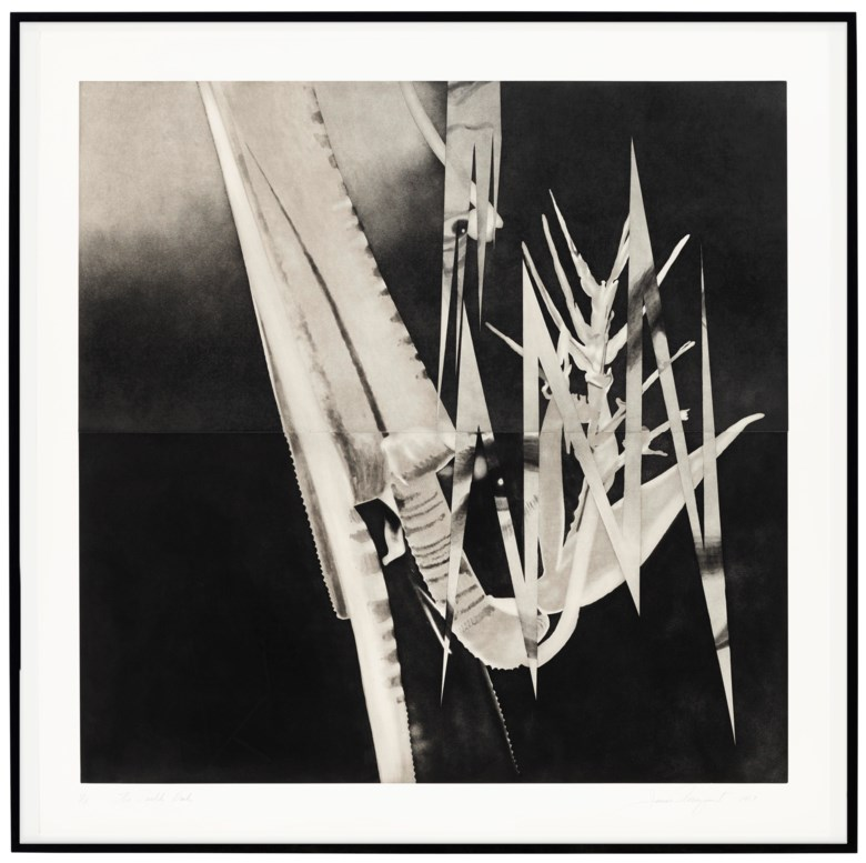 James Rosenquist (1933-2017), The Prickly Dark. Sheet 66¼ x 66¾ in (1683 x 1696 mm). Estimate $5,000-7,000. Offered in  Graphicstudio Online, 17-24 October 2019, Online