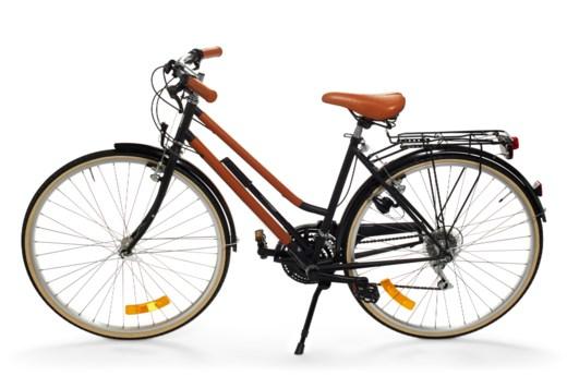 A LE FLÂNEUR D'HERMÈS BICYCLE