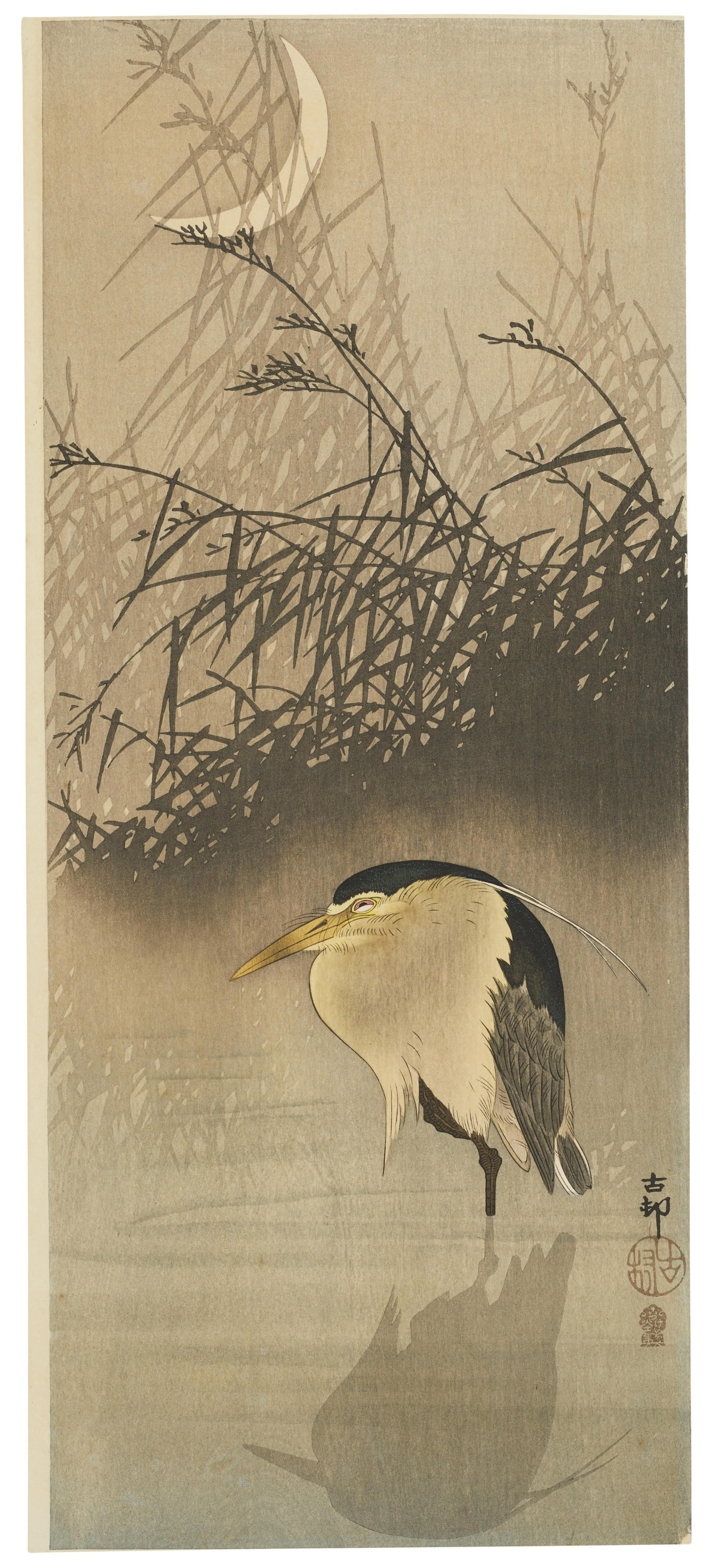 Edition Japanese Print Koson Asian Art Japan Egret on Branch 30x44 Ltd