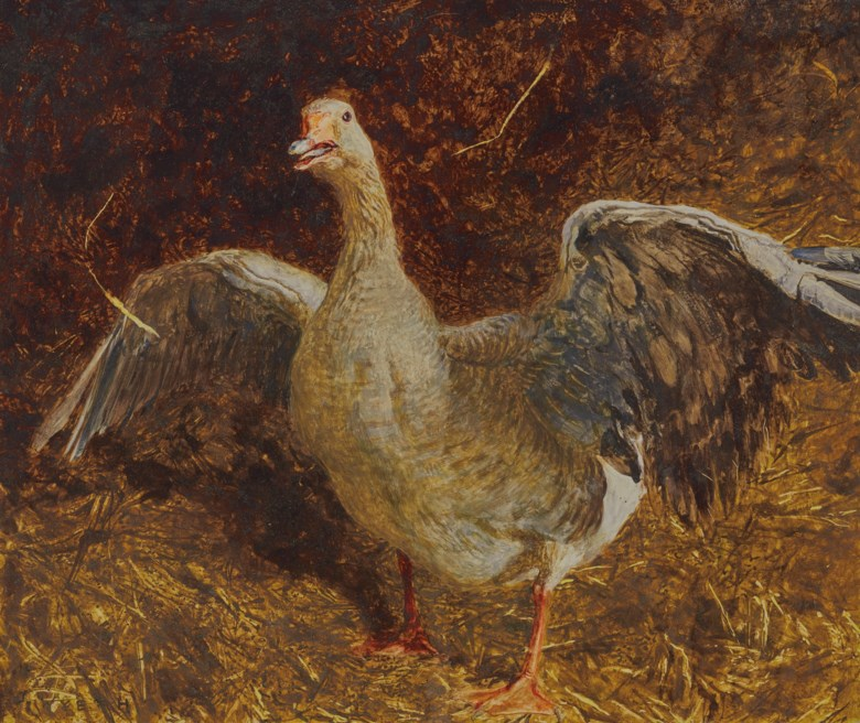 Jamie Wyeth (b. 1946), Angry Gander, 1987. Mixed media on paper laid down on board. 16½ x 19½  in (41.9 x 49.5  cm). Estimate $60,000-80,000. Offered in American Art on 20 November 2019 at Christie's in New York
