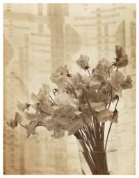 Untitled (Flowers in vase), 1930
