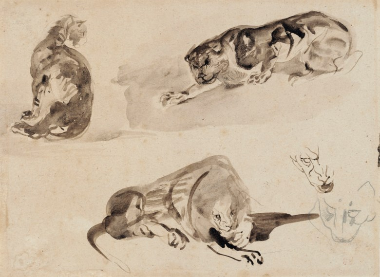 Eugène Delacroix (1798-1863), Studies of a cat and two lions. Graphite, brush and brown wash. 23.3 x 31.6  cm. Sold for €21,250 on 27 March 2019 at Christie's in Paris