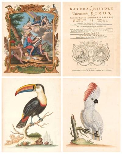 EDWARDS (G.). A Natural Histor
