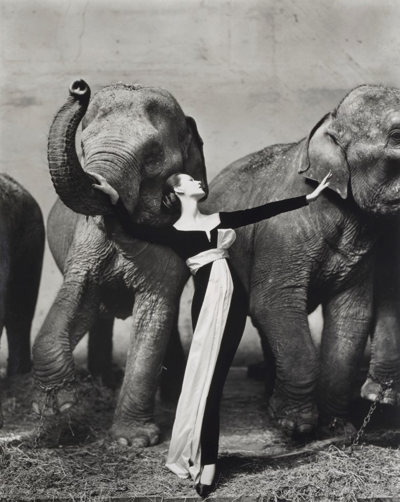 Richard Avedon (1923-2004), Dovima with Elephants, Evening Dress by Dior, Circus dHiver, Paris, 1955. Image  sheet  mounting 130.5 x 104  cm (51⅜ x 41  in). Estimate €250,000-350,000. Offered in Icons of Glamour & Style The Constantiner Collection on June 19 2019 at Christie's in Paris