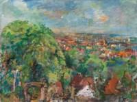 Wien, Blick vom Liebhartstal II