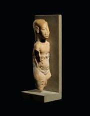 AN EGYPTIAN NUMMULITIC LIMESTO