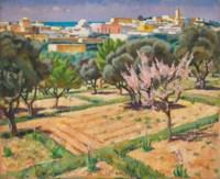 Spring in Sidi-bou-Said