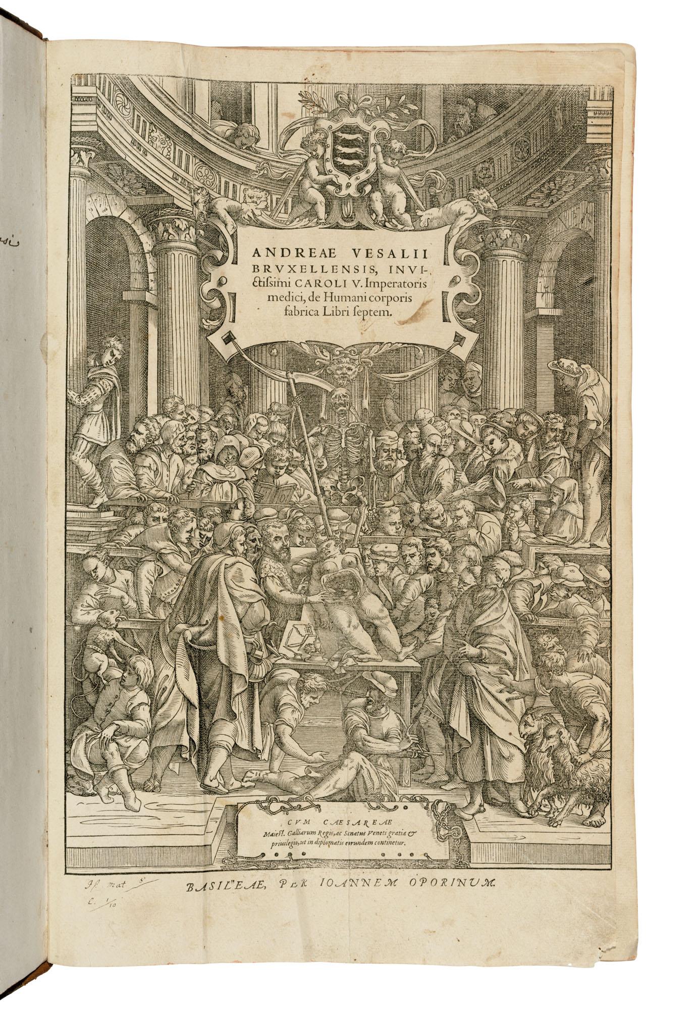 Andreas Vesalius (1514-1564)