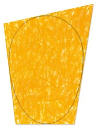 Irregular Yellow-Orange Area with a Drawn Ellipse