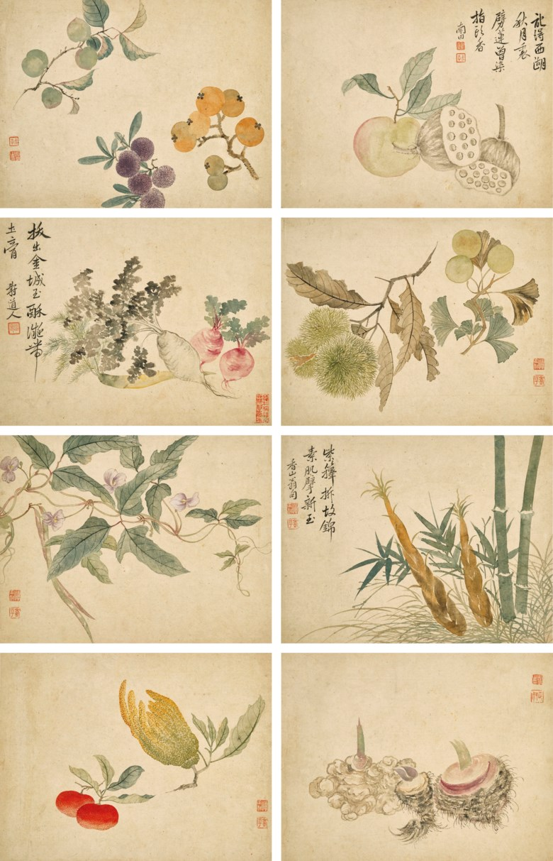 Yun Shouping (1633-1690), Flowers and Fruits Album. Each leaf measures 25.3 x 32.8  cm (10 x 12⅞  in). Estimate HK$3,000,000-5,000,000. Offered in Fine Chinese Classical Paintings and Calligraphy on 2 December 2020 at Christie's in Hong Kong