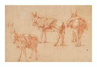 Three studies of a donkey