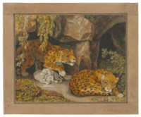 A leopard and leopardess with their cubs at the entrance of a cave