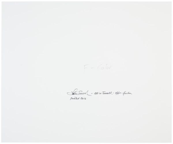 WALTER IOOSS JR. (B.1943)