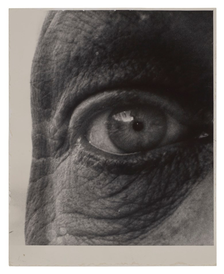 Bill Brandt (1904-1983), Jean Dubuffet, 1963. Sheet 9⅞ x 8 in (25.1 x 20.3 cm). Estimate $10,000-15,000. Offered in The Unseen Eye Photographs from the W.M. Hunt Collection, 5-14 October 2020, Online