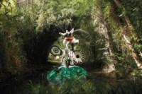 La femme et L'oiseau fontaine