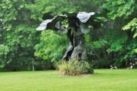 Œramen, la conscience est un arbre