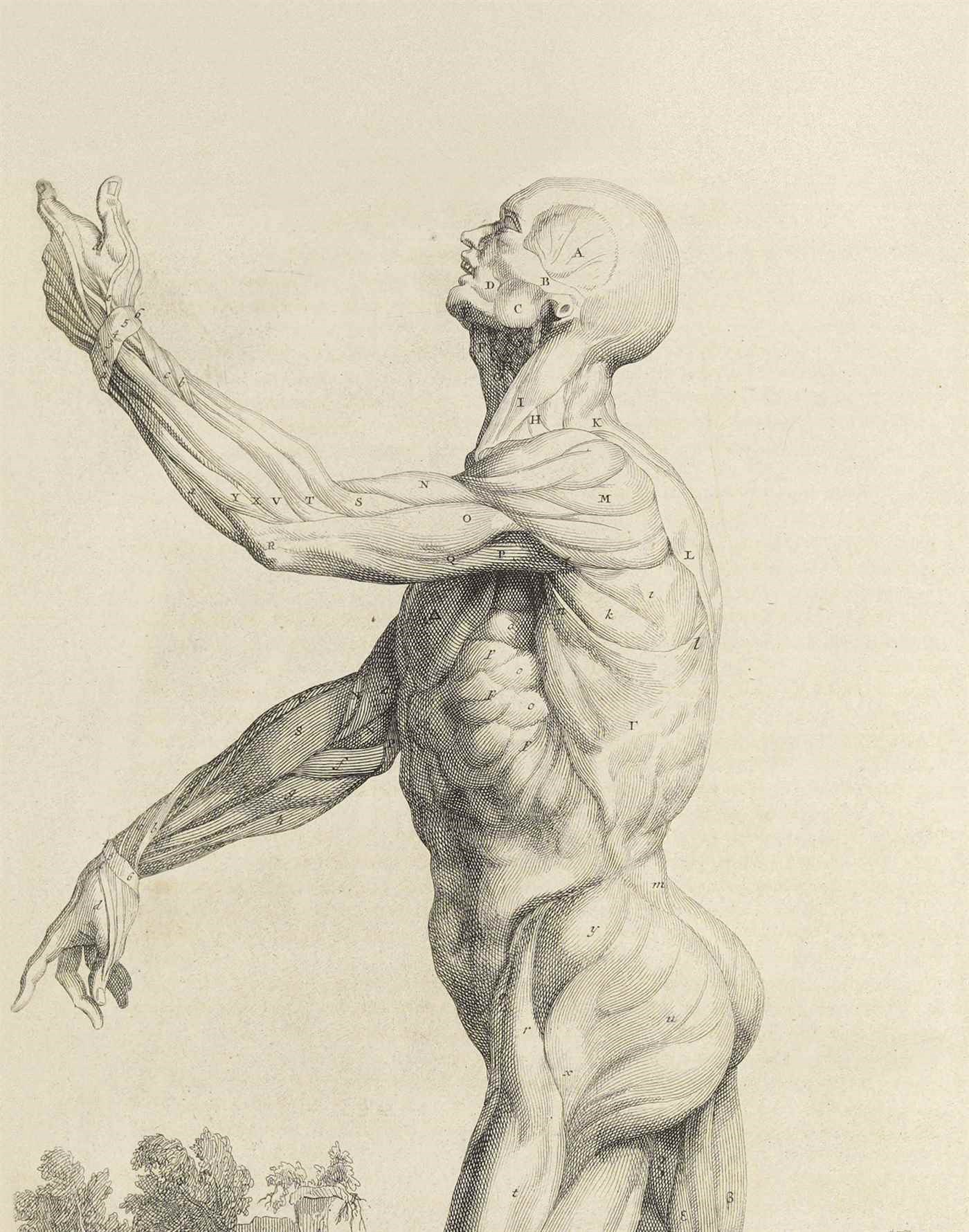 Science & Medicine Books From  auction at Christies