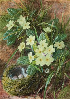 Still life of a bird's nest and primroses