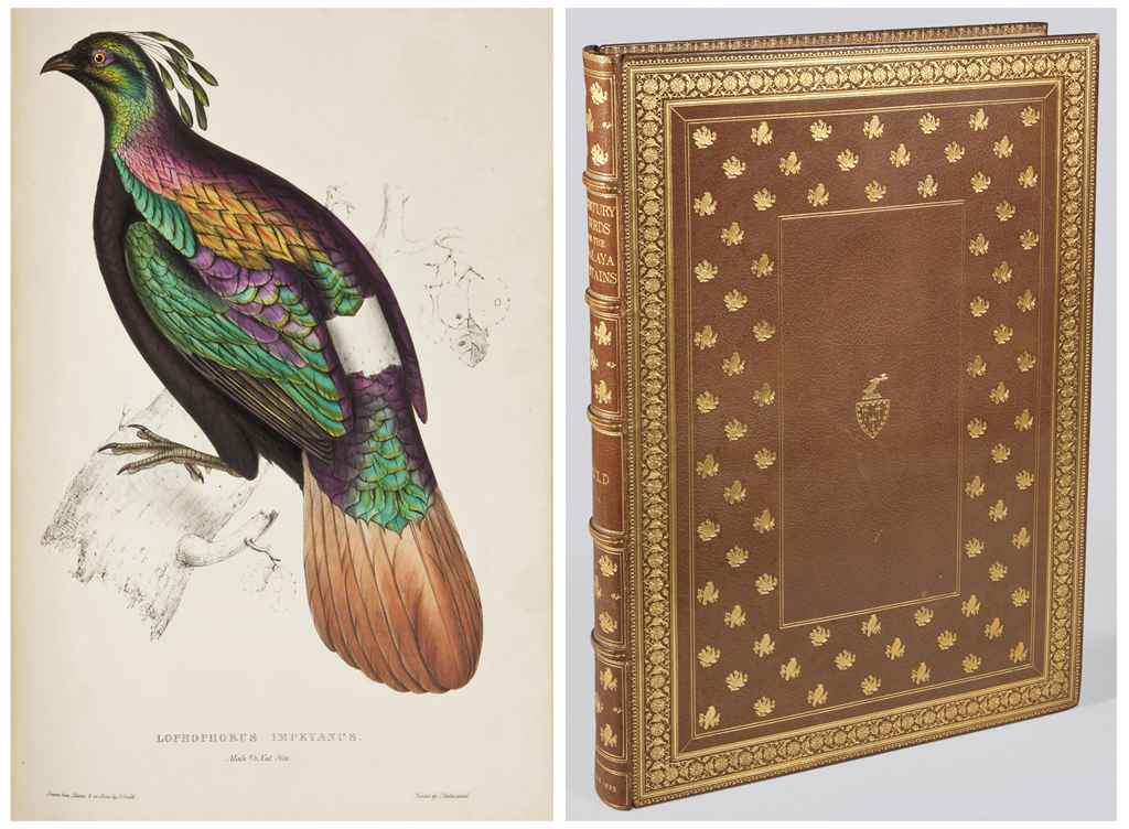 GOULD, John (1804-1881) A Century of Birds from the Himalaya...
