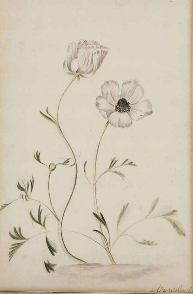 ALIDA WITHOOS (AMERSFOORT 1659