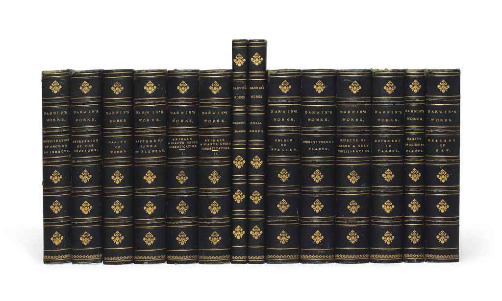 14 volumes of the works of the Earl of Beaconsfield 1904 - Endymion, Coningsby
