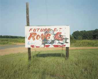 Sign, Near Greensboro, Alabama (future rose), 1978