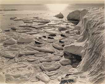Seals Basking on Pancake Ice, Antarctica, c. 1911