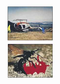 Helicopter and Insects (One Red), Version 1