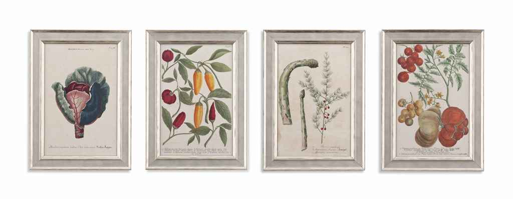 ELEVEN ENGRAVINGS OF FOOD AND