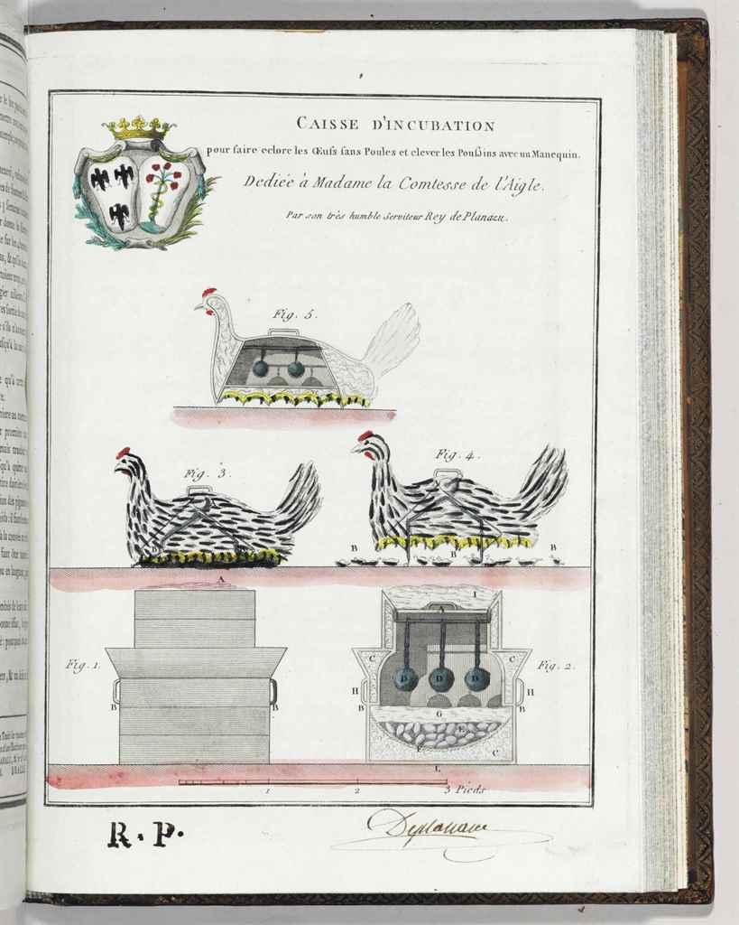 PLANAZU, Rey de (18th century)