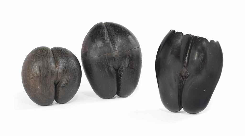 THREE COCO-DE-MER (LODOICEA MA