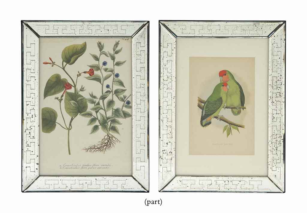 TWELVE COLOUR WOOD ENGRAVINGS