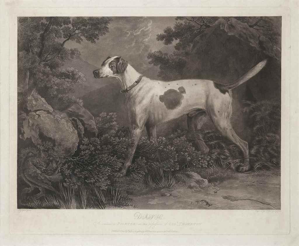 William Woollett (1735-1785),