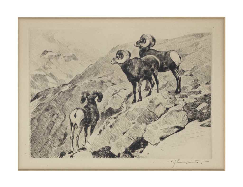 Carl Rungius (American, 1869-1