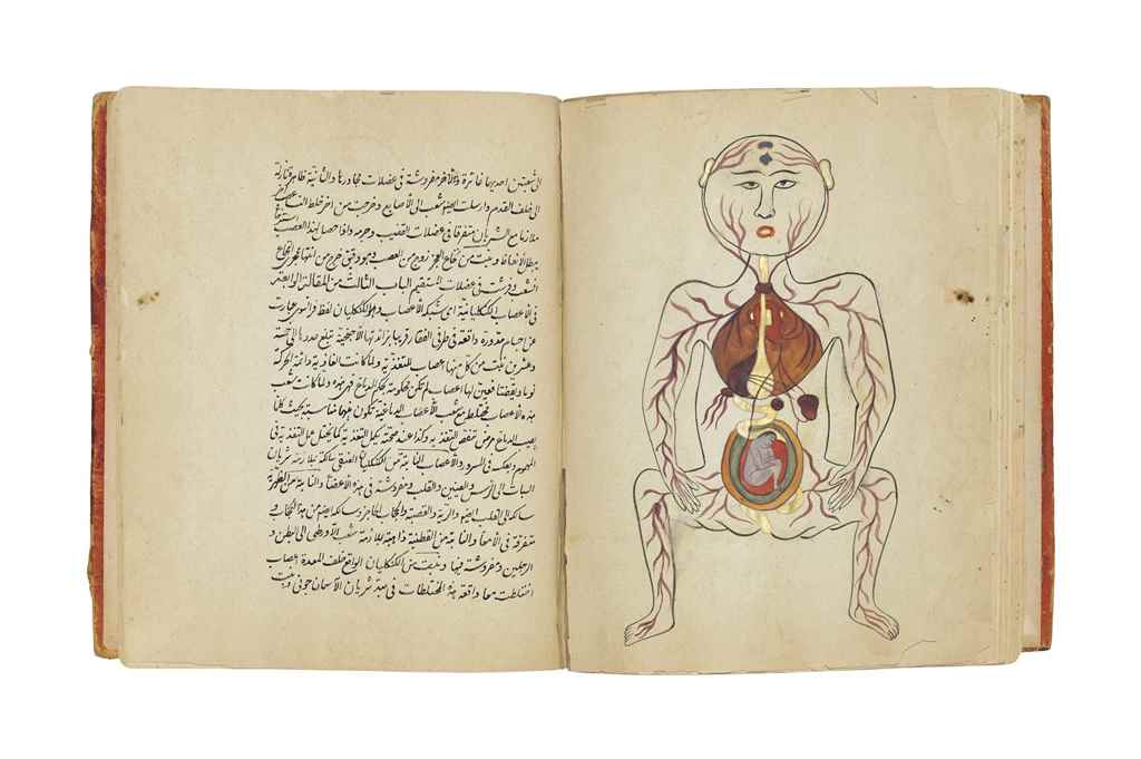 AN ILLUSTRATED MEDICAL TREATIS