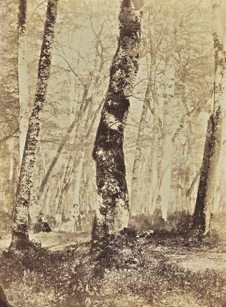 CONSTANT ALEXANDRE FAMIN (1827