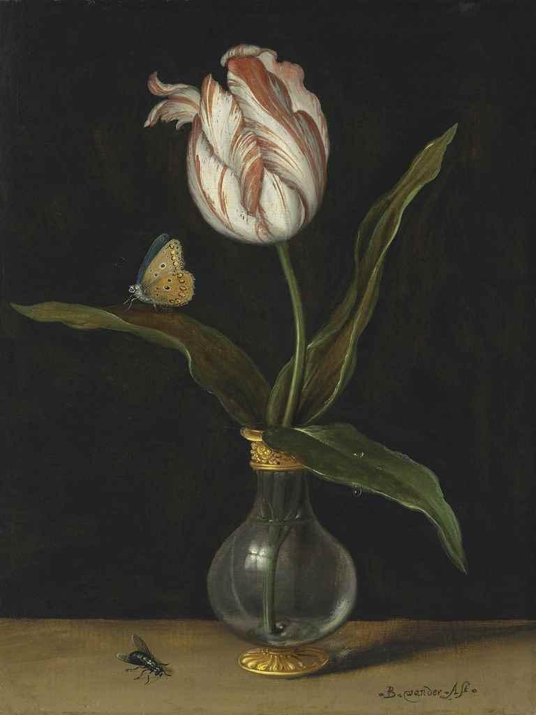 Balthasar van der Ast (Middelb